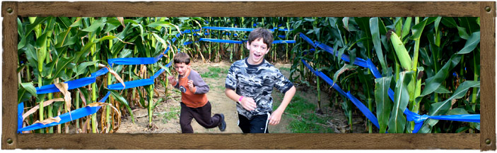 Giant Maize Quest® Corn Maze - Newport, PA