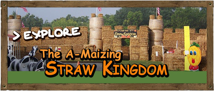 Straw Kingdom - Fun for kids and groups